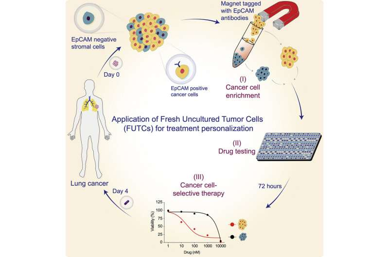 New diagnostic assay holds potential for tailoring personalized cancer treatment