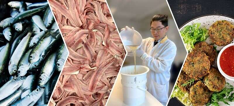 New dipping solution turns the whole fish into valuable food
