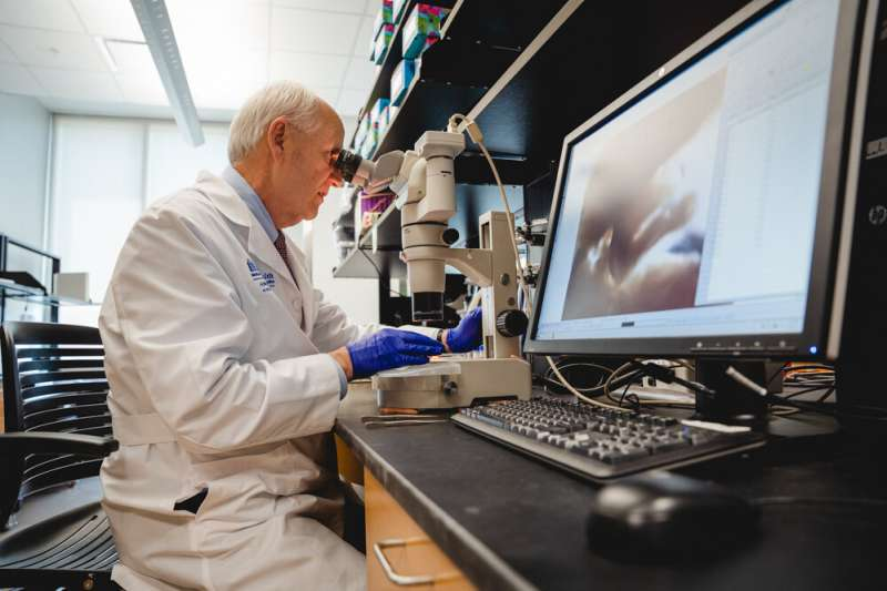 New discovery made by MUSC Hollings Cancer Center researchers enhances understanding of colorectal cancer