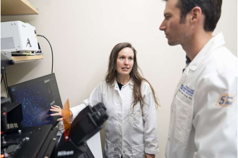 New insights about melanocytes could lead to more targeted melanoma treatments