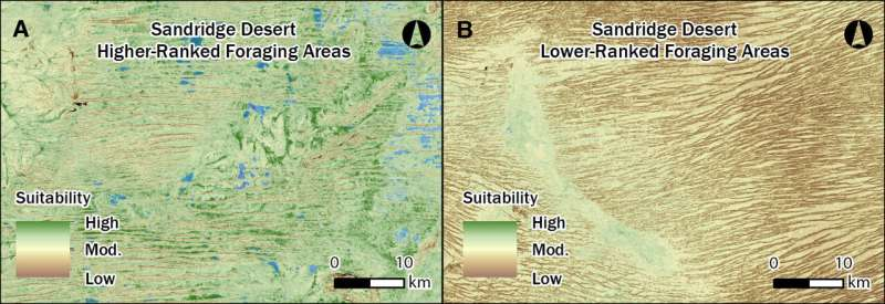 New insights into survival of ancient Western Desert peoples