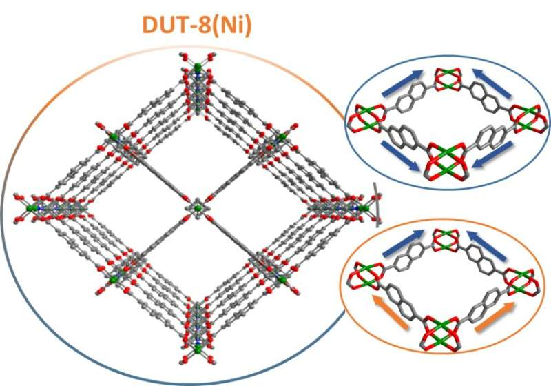 New insights into switchable MOF structures