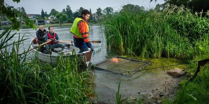 Nuevo método para oxigenar lagos muestra resultados prometedores