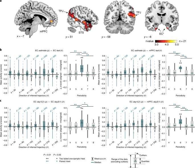 New model for solving novel problems uses mental map