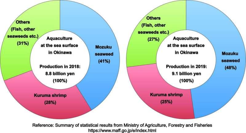 Una nueva investigación proporciona un recurso genético útil para el camarón kuruma criado en granjas