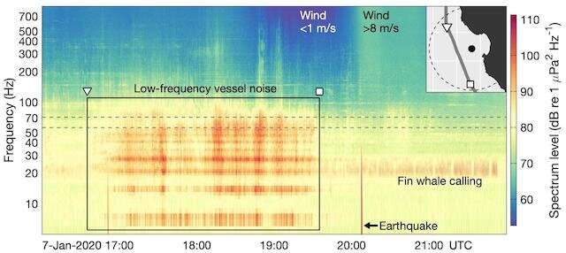 New research reveals ocean noise from shipping traffic reduced during COVID-19 pandemic