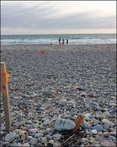 New research unlocks the mystery of New England's beaches