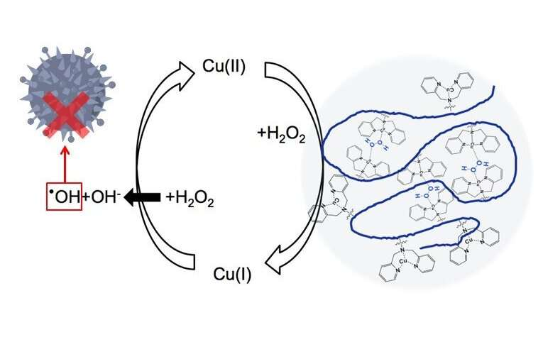 New strategy for drug design: Keeping copper atoms closer to keep bacteria away