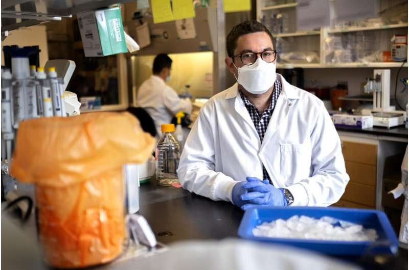 New universal vaccine targets coronaviruses to prevent future pandemics