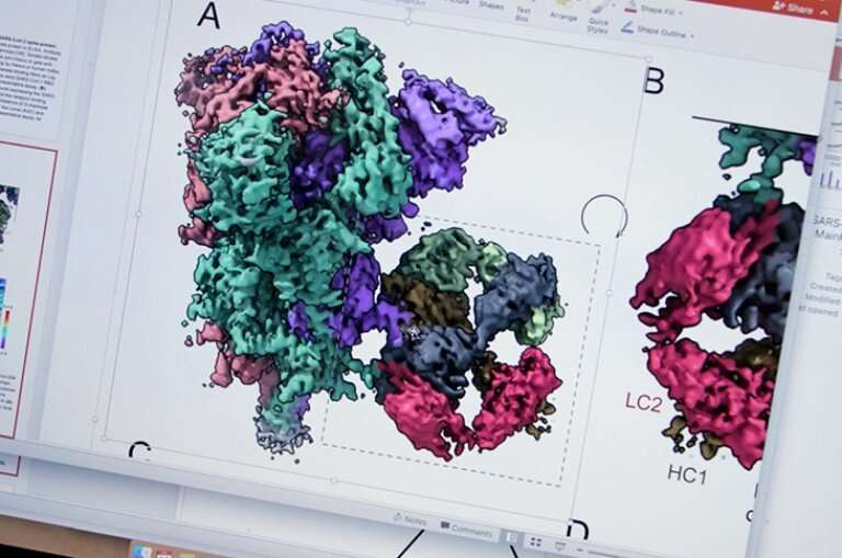 New vaccine blocks COVID-19 and variants, plus other coronaviruses