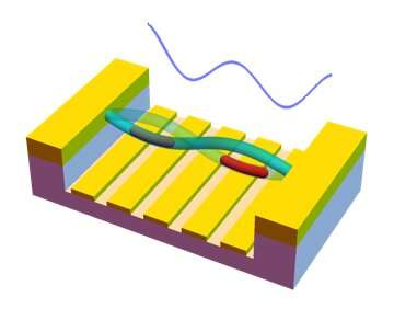 New viable means of storing information for quantum technologies?