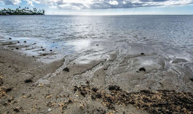 New analysis highlights importance of groundwater discharge into oceans