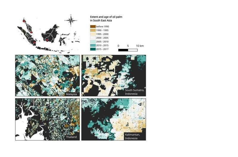 New oil palm map to inform policy and landscape-level planning