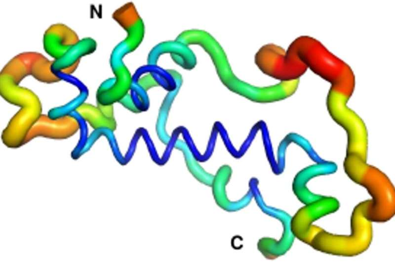 New proteins 'out of nothing'