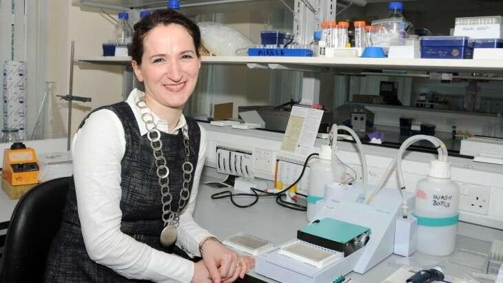 New prototype COVID-19 antibody test developed