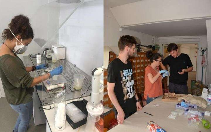 New results about the diets of people who lived on the Great Hungarian Plain