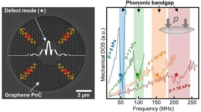 New skills of Graphene: Tunable lattice vibrations