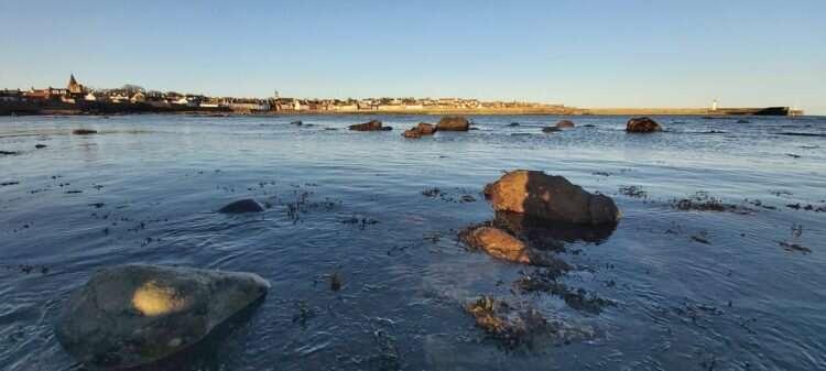 New study improves marine climate change evidence base