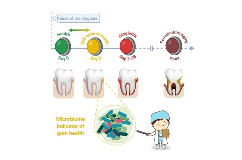 New Study Shows 24-72 Hours of Poor Oral Hygiene Impacts Oral Health