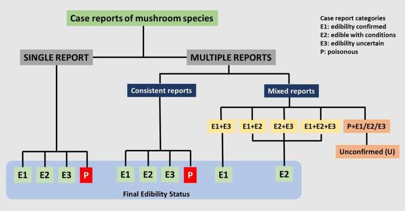 New system for evidence-based mushroom classification