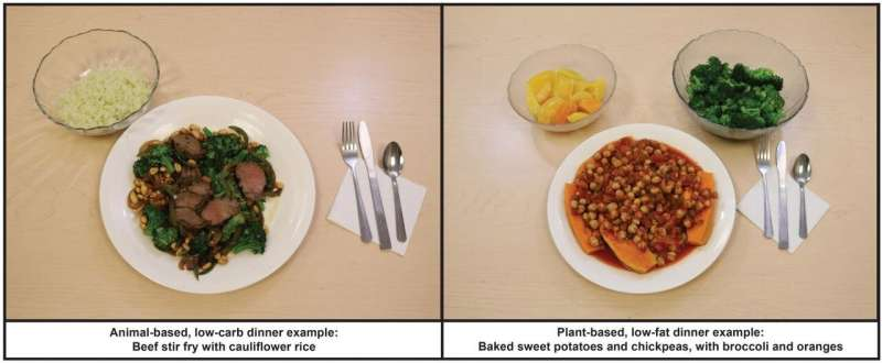 NIH study compares low-fat, plant-based diet to low-carb, animal-based diet