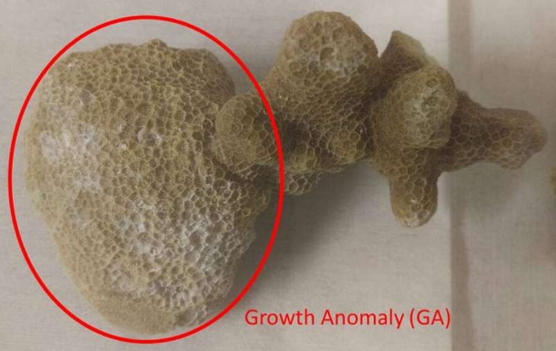 NIST uses method to understand the molecular underpinnings of a disease affecting corals