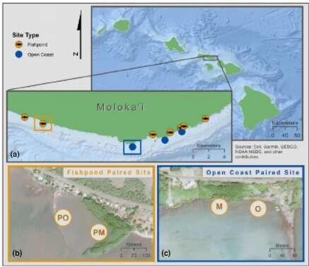 Non-native mangroves on Hawaii's Moloka'i Island provide beneficial ecosystem services