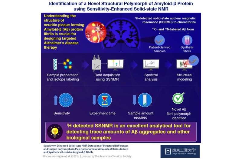 Novel Alzheimer's disease amyloid β polymorph now revealed!