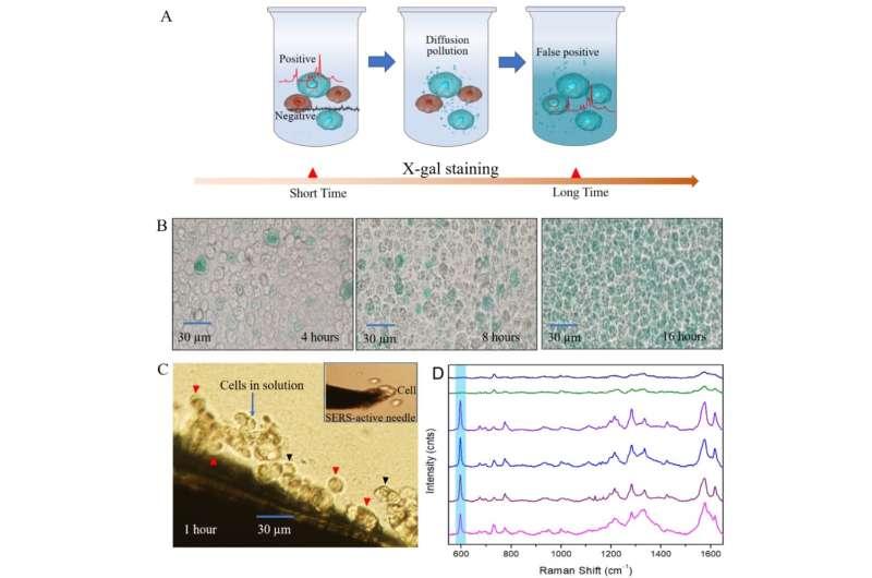 Novel SERS strategy developed for beta-galactosidase activity assay