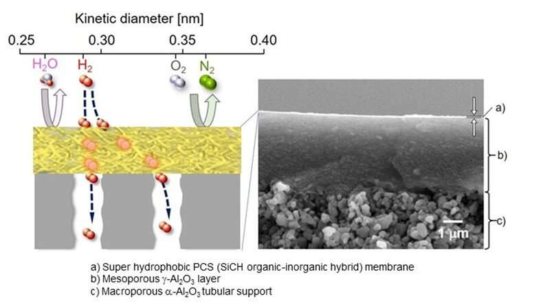 Novel hydrogen fuel purification membrane paves the way for greener future