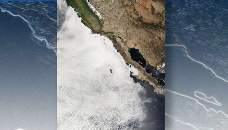 Observations show marine clouds amplify warming
