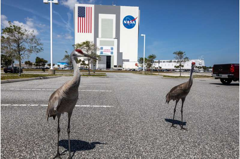 On a changing planet, NASA goes green