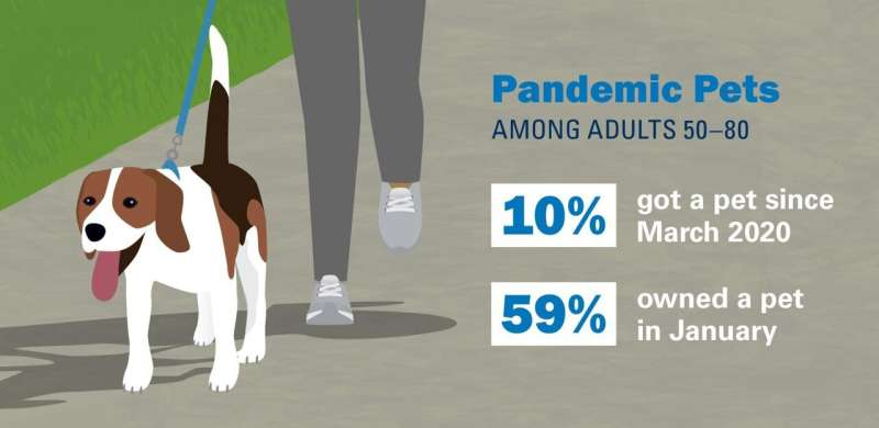 """One in 10 older adults have gotten a """"pandemic pet,"""" poll finds"""