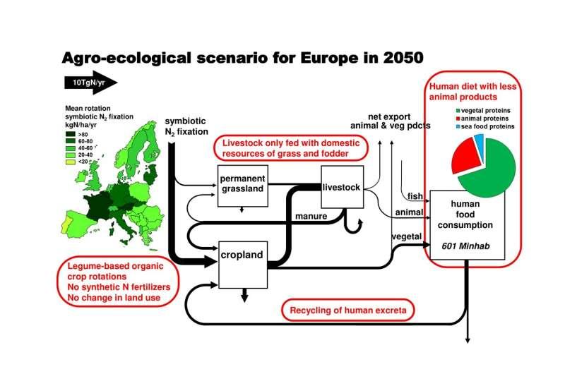 La agricultura ecológica podría alimentar a Europa en 2050