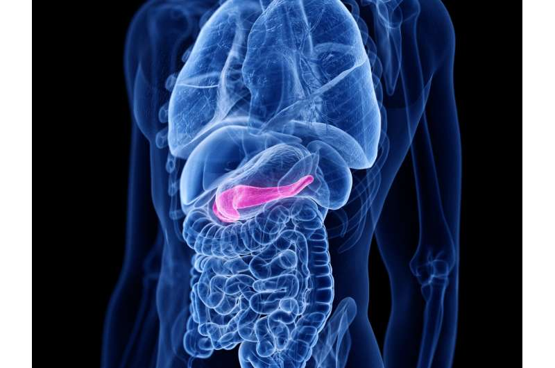 Paradigm shift in the treatment of pancreatic cancer: new treatment option also successful in older patients