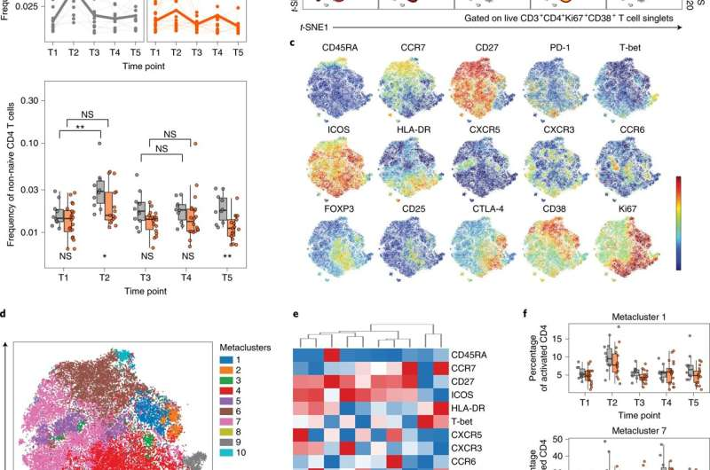 Patients with multiple sclerosis show robust T-cell responses to mRNA COVID-19 vaccines