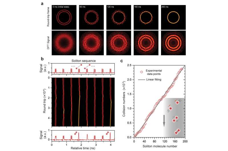 PCF-based 'parallel reactors' unveils collective matter-light analogies of soliton molecules