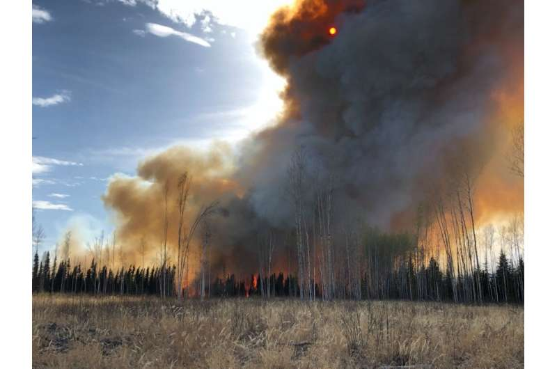 Peatlands pose complex, poorly understood wildfire risk, researchers warn