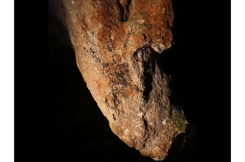 Philippines cave art becomes first directly dated in Southeast Asia