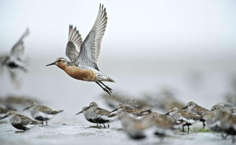 Photo posts reveal huge interest for real coastal nature