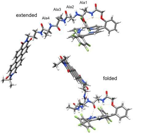 Picosecond electron transfer in peptides can help energy technologies