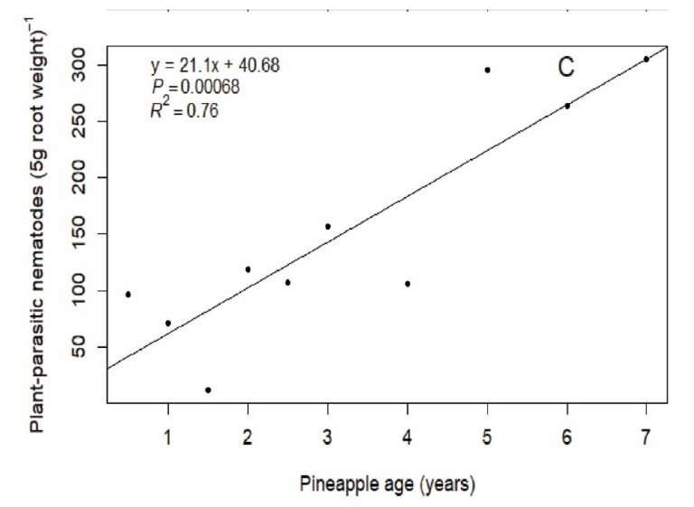 Plant parasitic nematodes harm pineapple crop yields in Kenya