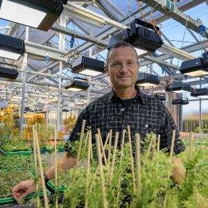 Plant physiology: A tale of three proteins