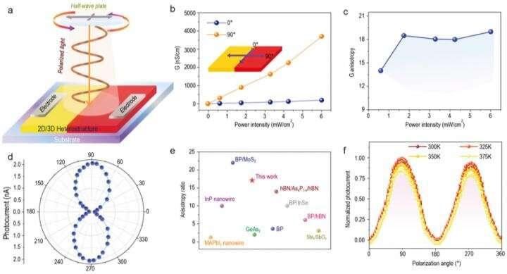 Polarization-sensitive photodetection using 2D/3D perovskite heterostructure crystal