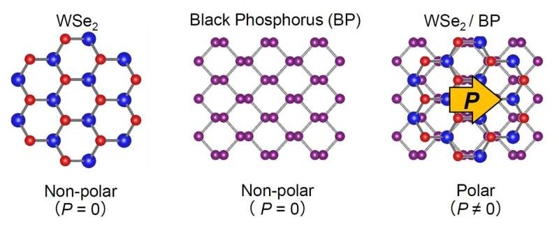 Polarized photovoltaic characteristics