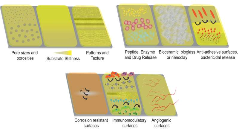 Polymer-based coatings on metallic implants improve bone-implant integration