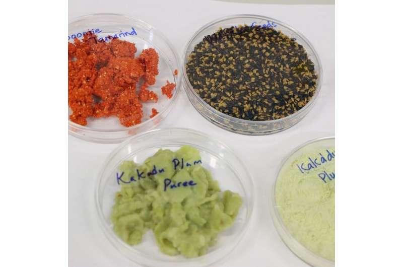 Portable chemistry kit sweetens native bush food production