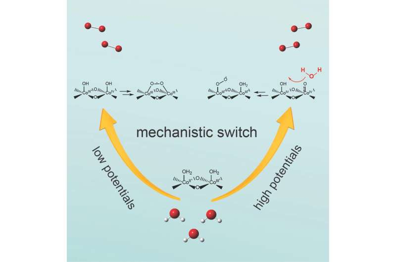 Potential-dependent switch aids water-splitting using cobalt-oxide catalysts