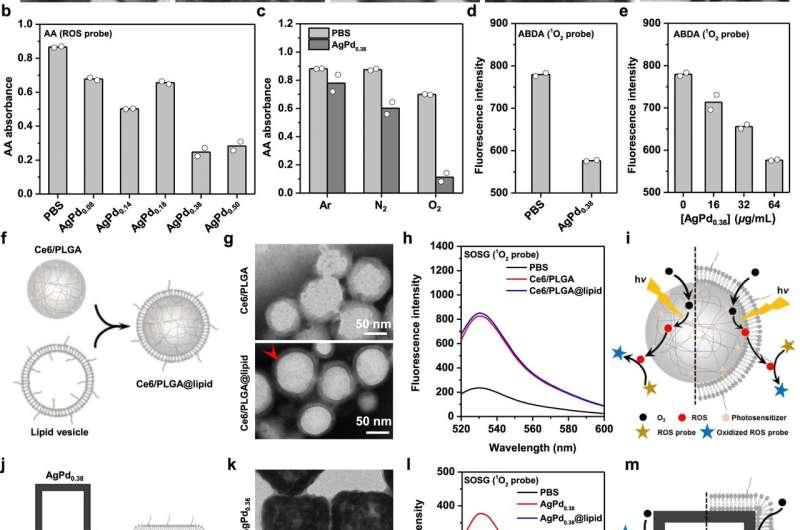 Practical nanozymes discovered to fight antimicrobial resistance