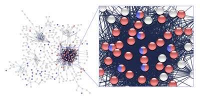 Precision-medicine approach turns up novel drug combination for aggressive leukemias